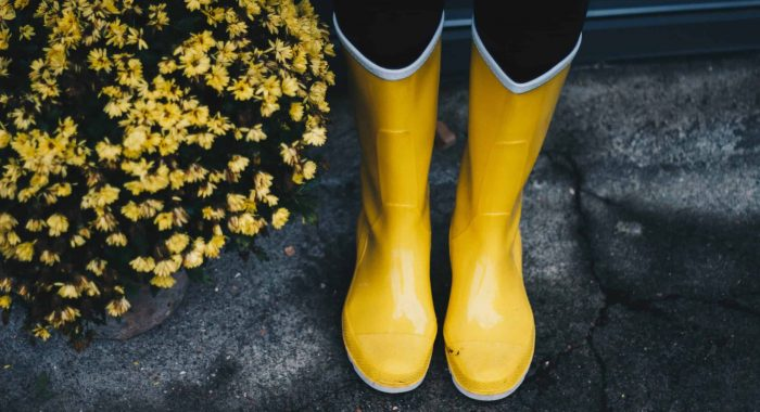 Image For Level 3 - Valtris Specialty Chemicals - photo-of-yellow-boots-near-flowers-712883